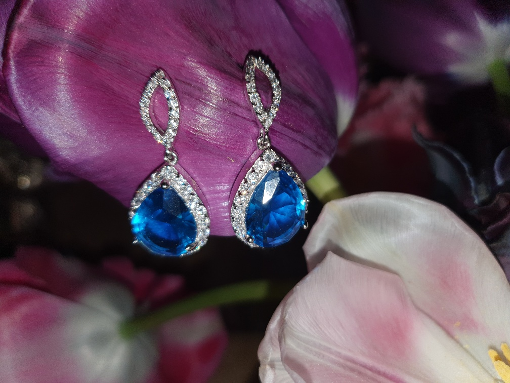 Dark Blue Earrings